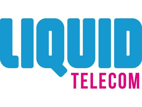 sub saharan africa developing telecoms